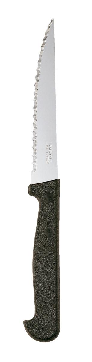 Boîte de 24 couteaux à steak 21 cm (24 pièces)