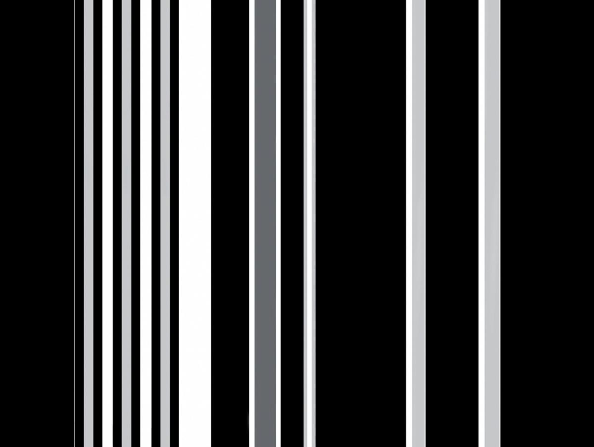 Set de table noir papier 40x30 cm Cogir (500 pièces)
