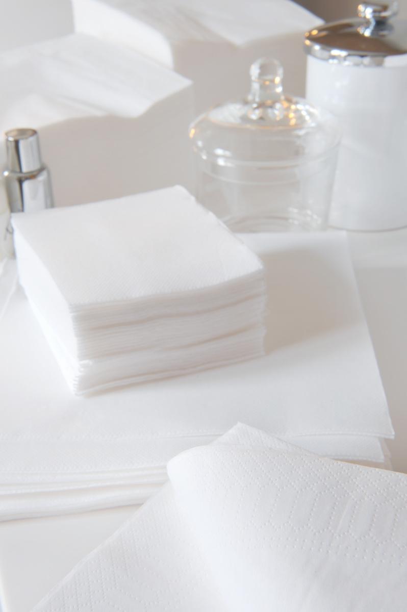 Serviette blanche ouate de cellulose 20x20 cm Celi Ouate Cgmp (50 pièces)