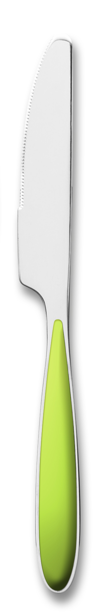 Couteau de table anis 22 cm Amande Tarrerias Bonjean