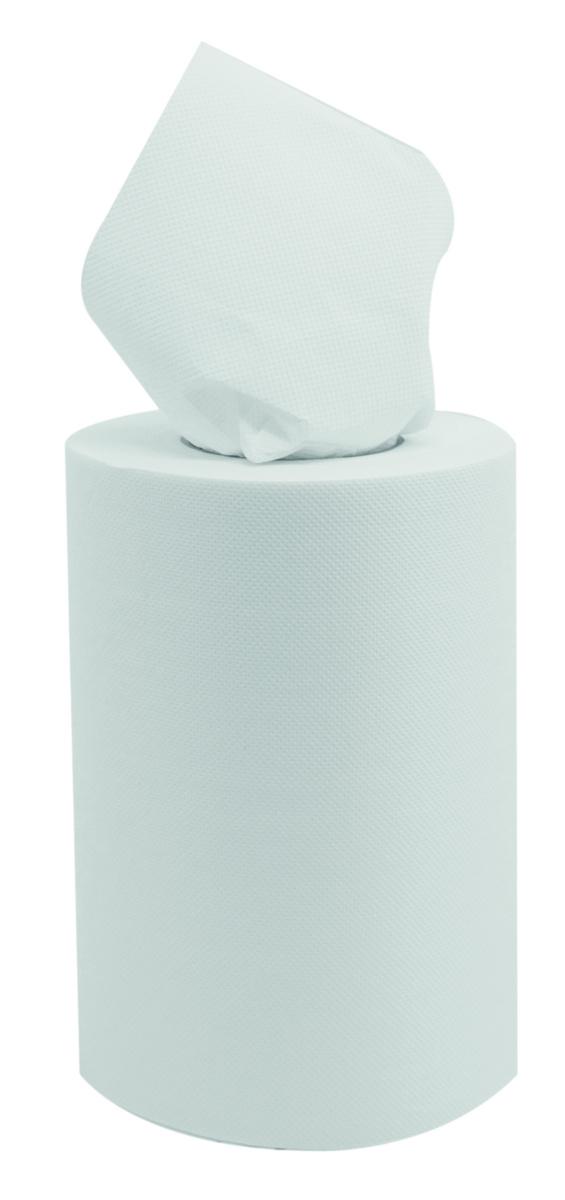 Bobine dévidage central blanc ouate de cellulose 25x19,40 cm (9 pièces)