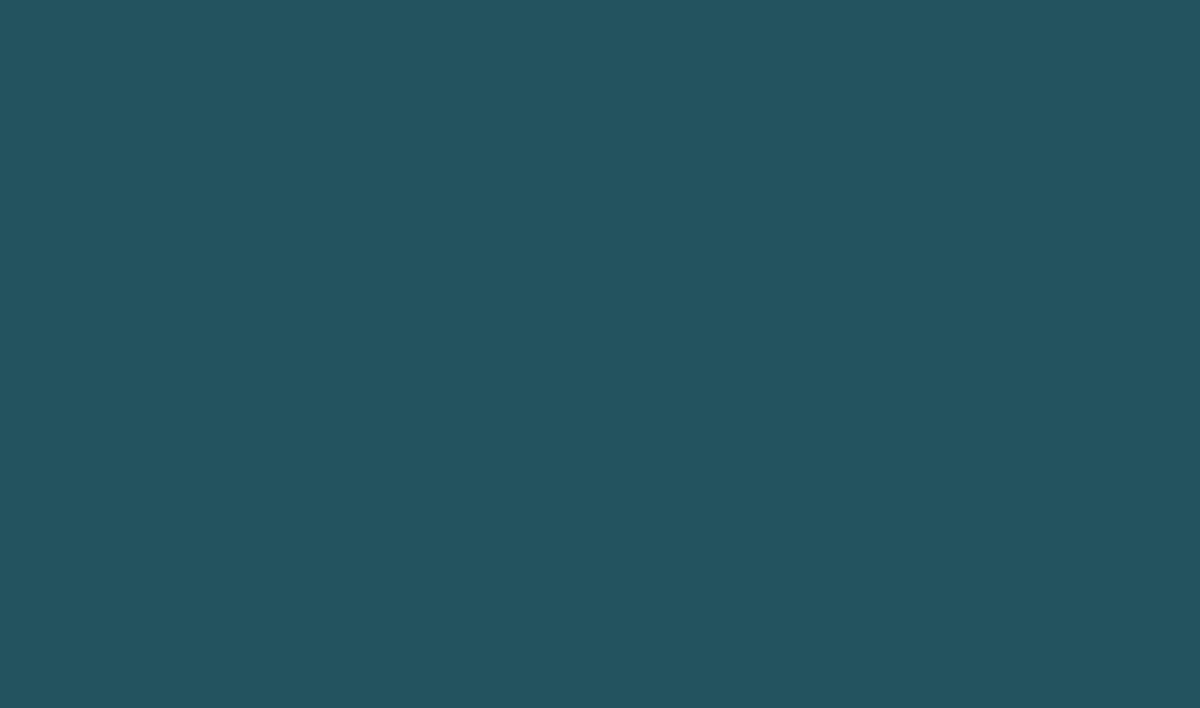 Rouleau tête à tête bleu canard non tissé 0,40x24 m Dunicel Duni
